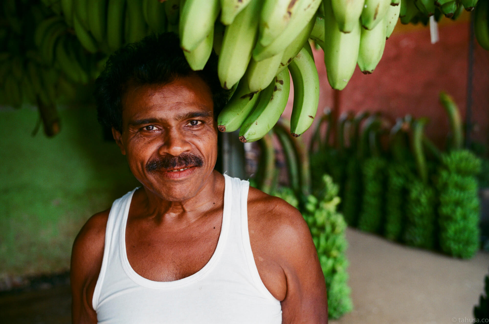 banana-shop-fruit-market-斯里蘭卡-Colombo-pettah-market-manning-sri-lanka-sri-lankan-nuwara-eliya-colombo-using-film-camera-with-analog-fuji-superia-premium-400-iso400-with-leica-summilux-35mm-f1.4-asph-fle