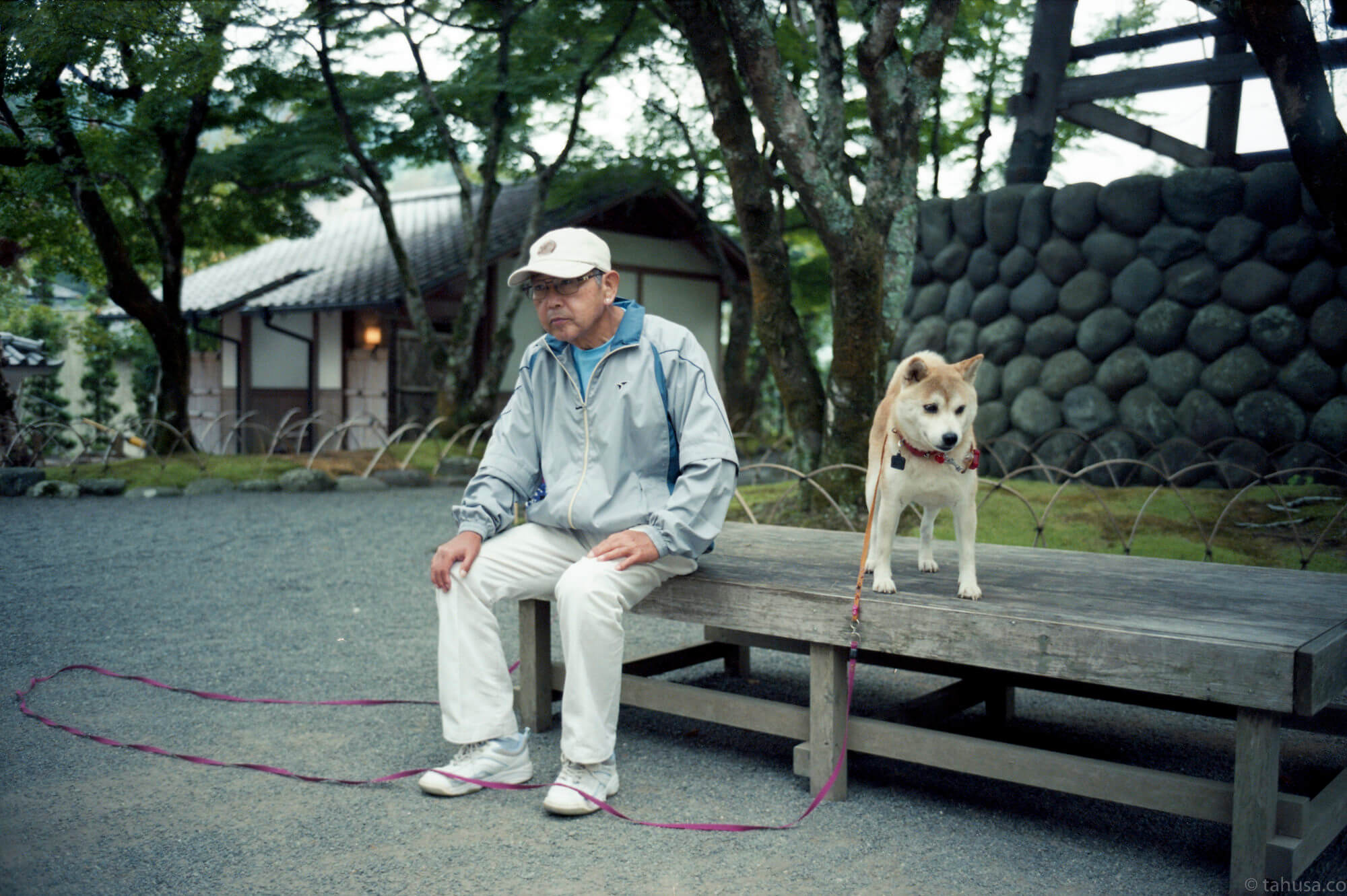 japanese-in-shrine-with-his-dog-resting-sitting-on-bench-tokyo-japan-travel-photography-using-ektar-100-kodak-and-summicron-35mm-f2-8elements-v1-leica-film