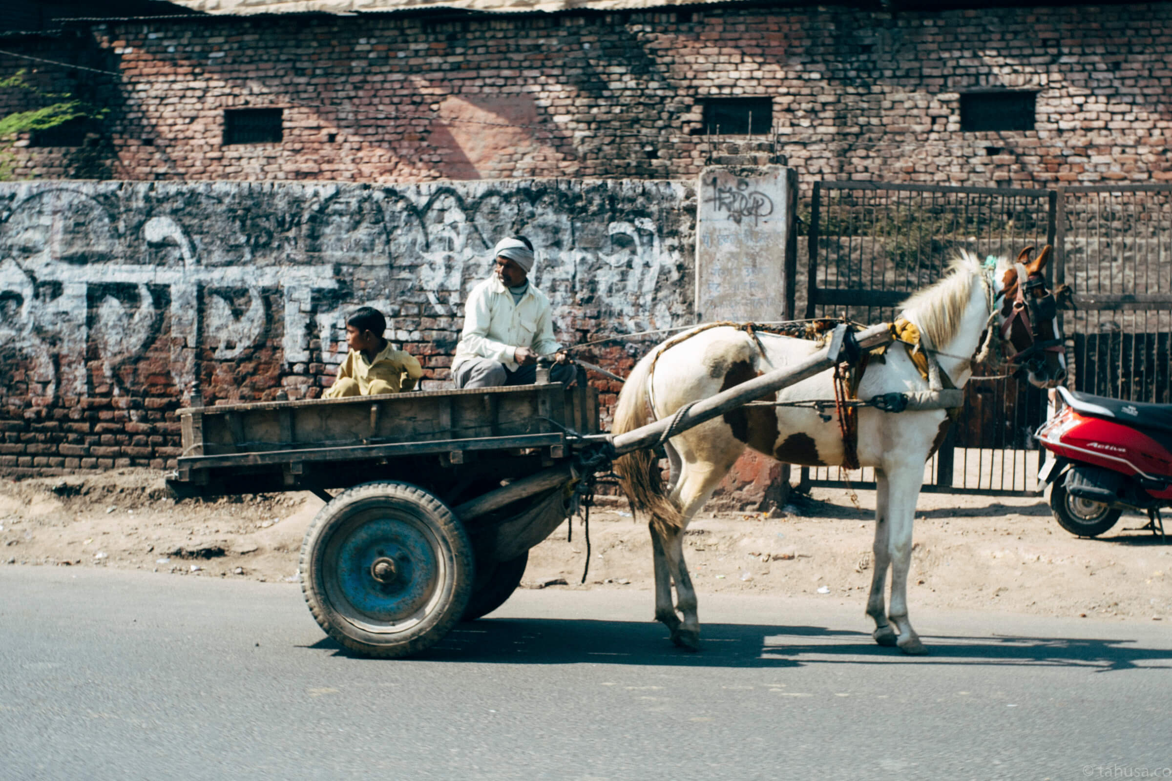 horse-cart-in-agra-fort-outside-palace-street-snap-cities-city-scanner