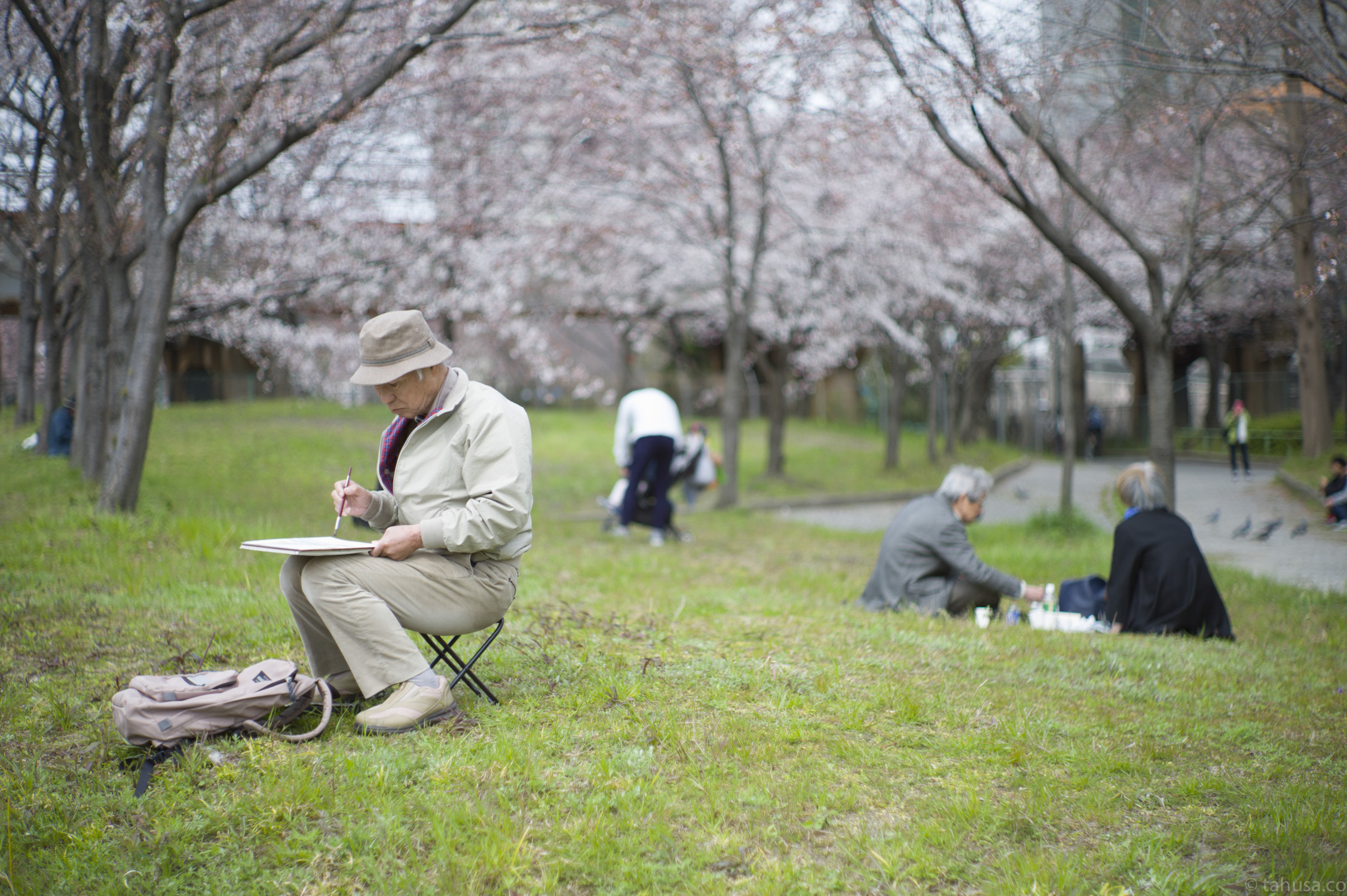 man-painting-drawing-under-tree-enjoying-osaka-castle-park-japan-japanese-street-snap-portrait-using-leica-m9-m9p-Noctilux-50mm-50-f1-f1.0-e58-v1-digital-camera-travel