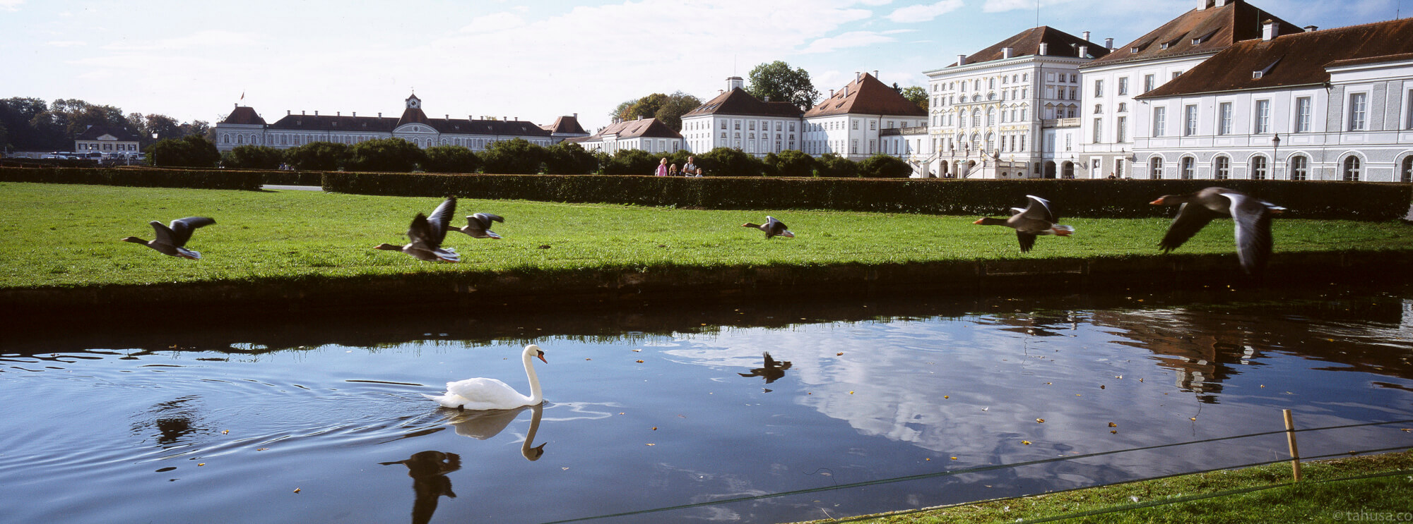 birds-goose-flying-over-bypass-scene-Munich-Germany-Nymphenburg Palace-Germany-slide-Hasselblad-xpan-xpanii-45mm-f4-lens-pano-panoramic-panorama-Long-format-135-film-Fuji-Fujifilm-Provia-RDPIII-RDP-100F