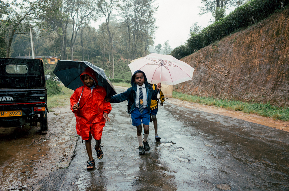 school-children-finish-walk-under-rain-to-home-muddy-road-heavy-rain-ella-sri-lanka
