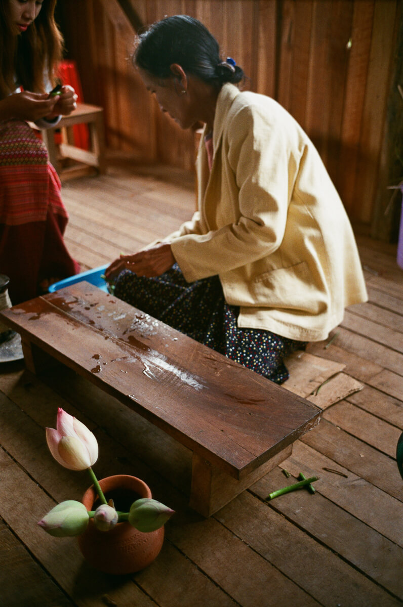lotus-sewing-making-fibre-out-of-it-inle-lake-mynamar-travelling-city-cities-snap-burma-fuji-fujifilm-superia-premium-400-leica-camera-summicron-35mm-f2-v1-8elements