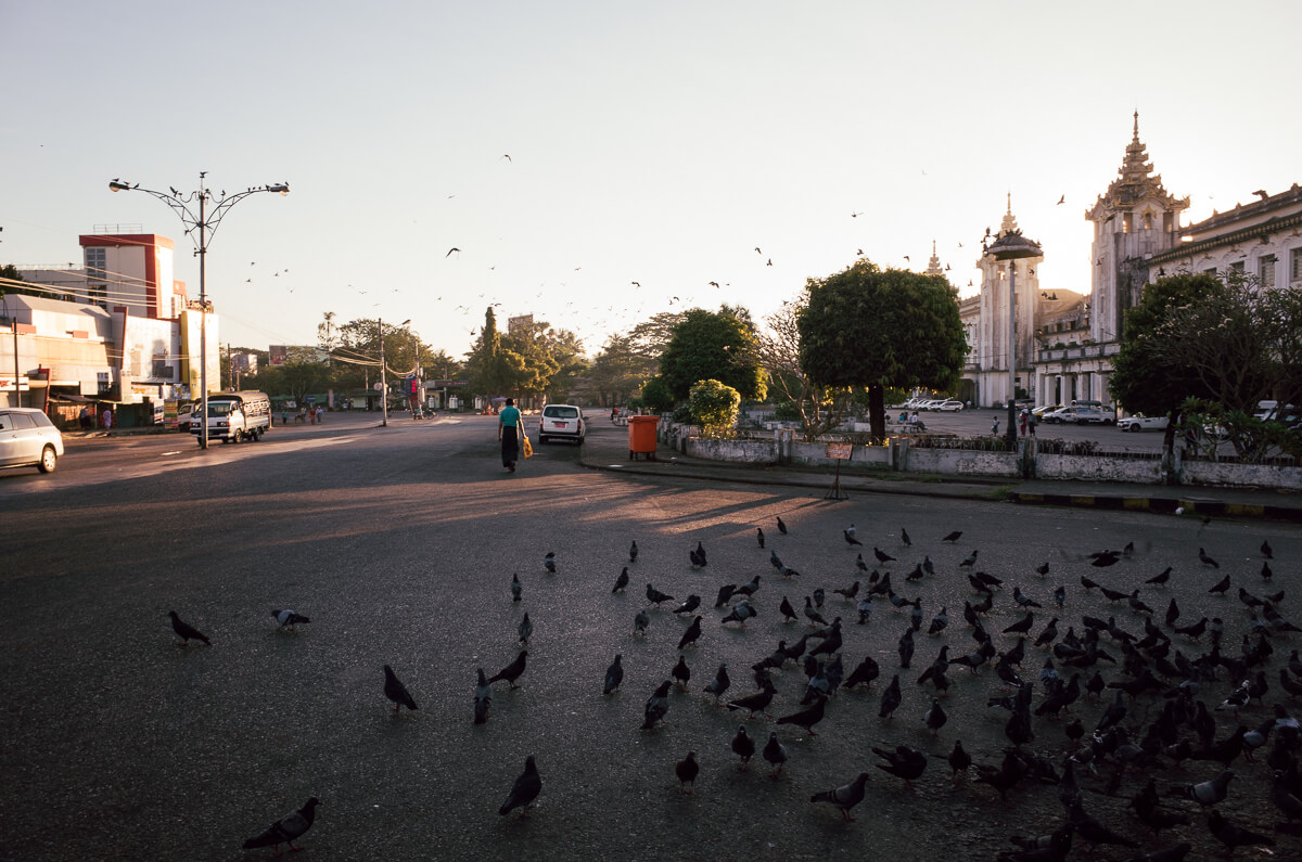 early-morning-arrived-in-yangon-central-station-jj-express-bus-pigeons-sunrise-leica-m2-summicron-35mm-f2-v1-myanmar-travelling-tourist-guide-street-photography