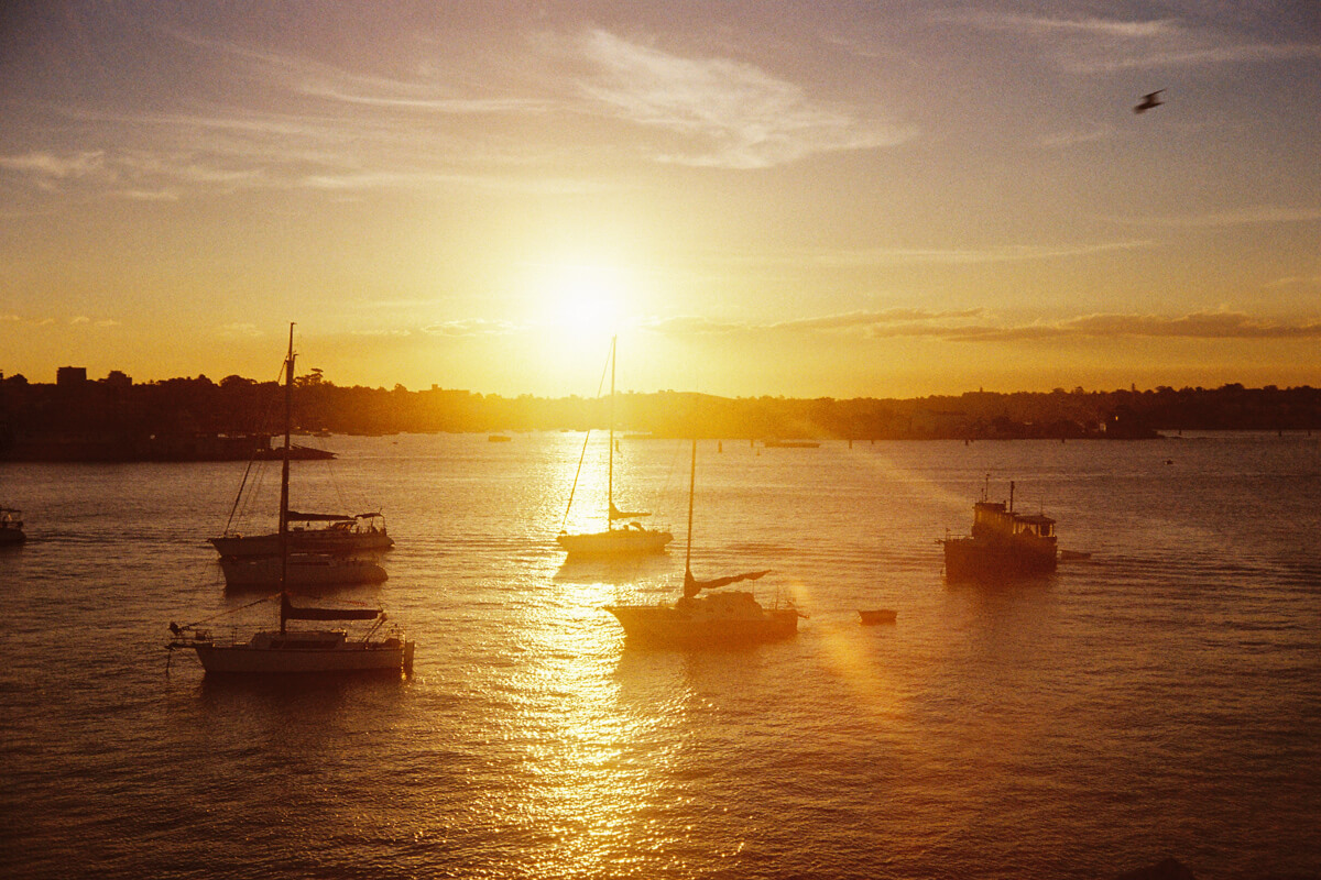 Canonet-film-photography-color-negative-sunset-sydney-australia-begin-photography-yellow