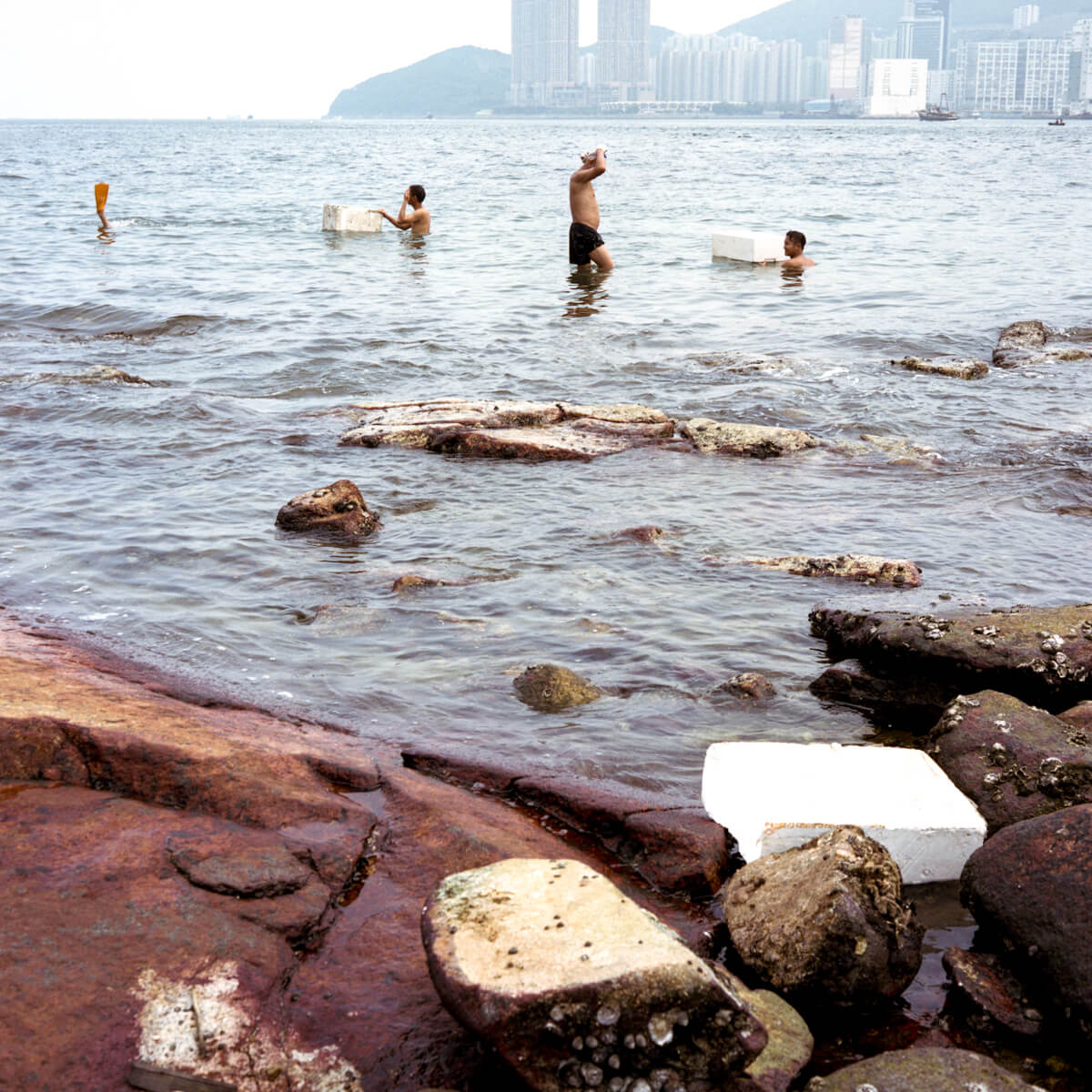 Fishermen-swim-catching-seafood-hong-kong-lei-yu-mun-Mamiya-C330-TLR-medium-format-120-6x6-square-format-Ektar-100-Kodak-sea