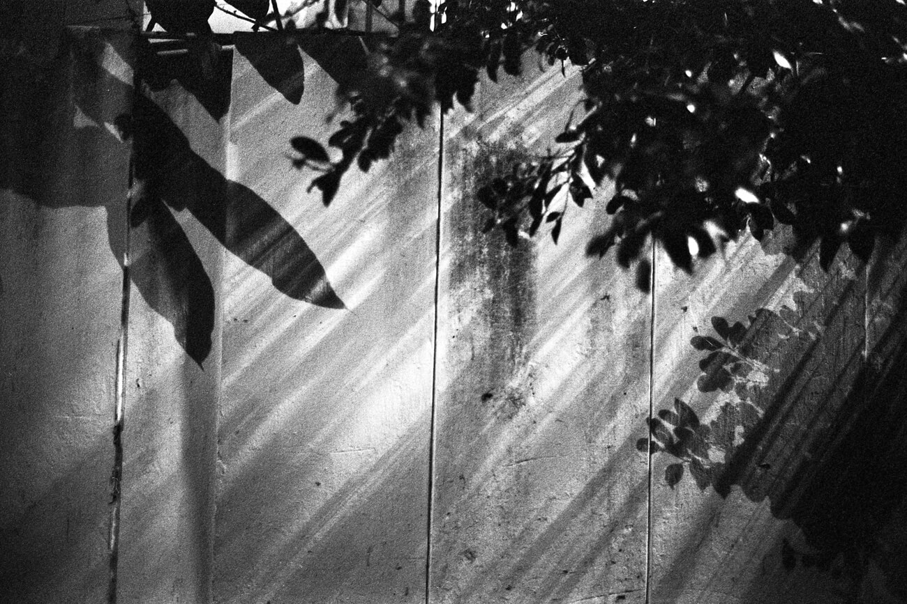 Analog-film-review-kodak-tri-x-trix-400-tahusa-bw-black-white-negative-D76-Summicron-8elements-35mm-f2-v1-rays-of-light-hong-kong-hk