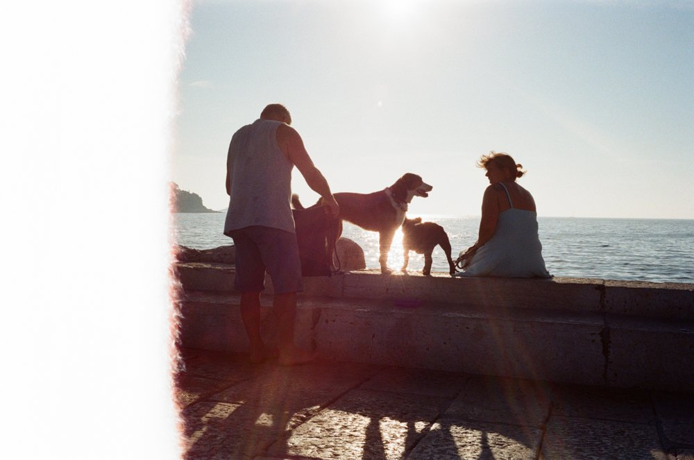 Lens-review-Leica-Summilux-pre-a-infinity-lock-35mm-1.4-film-comparison-compare-first-frame-rovinj-croatia-dogs-sunshine-family-activities-kodak-ultramax-400-first-frame-of-the-roll