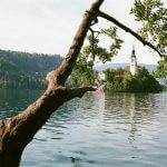 kodak-ultramax-400-iso-film-review-lake-bled-slovenia-travel-composition-tree-branches-church-summilux-35mm-f1.4-leica-infinity-lock