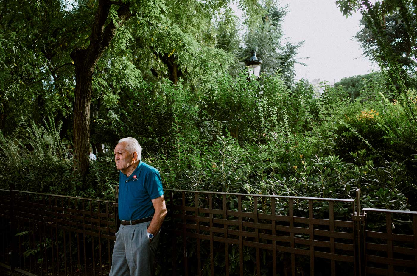 ricoh-gr-II-III-review-camera-point-and-shoot-28mm-park-in-barcelona-old-man-portrait-perfect-light-tree