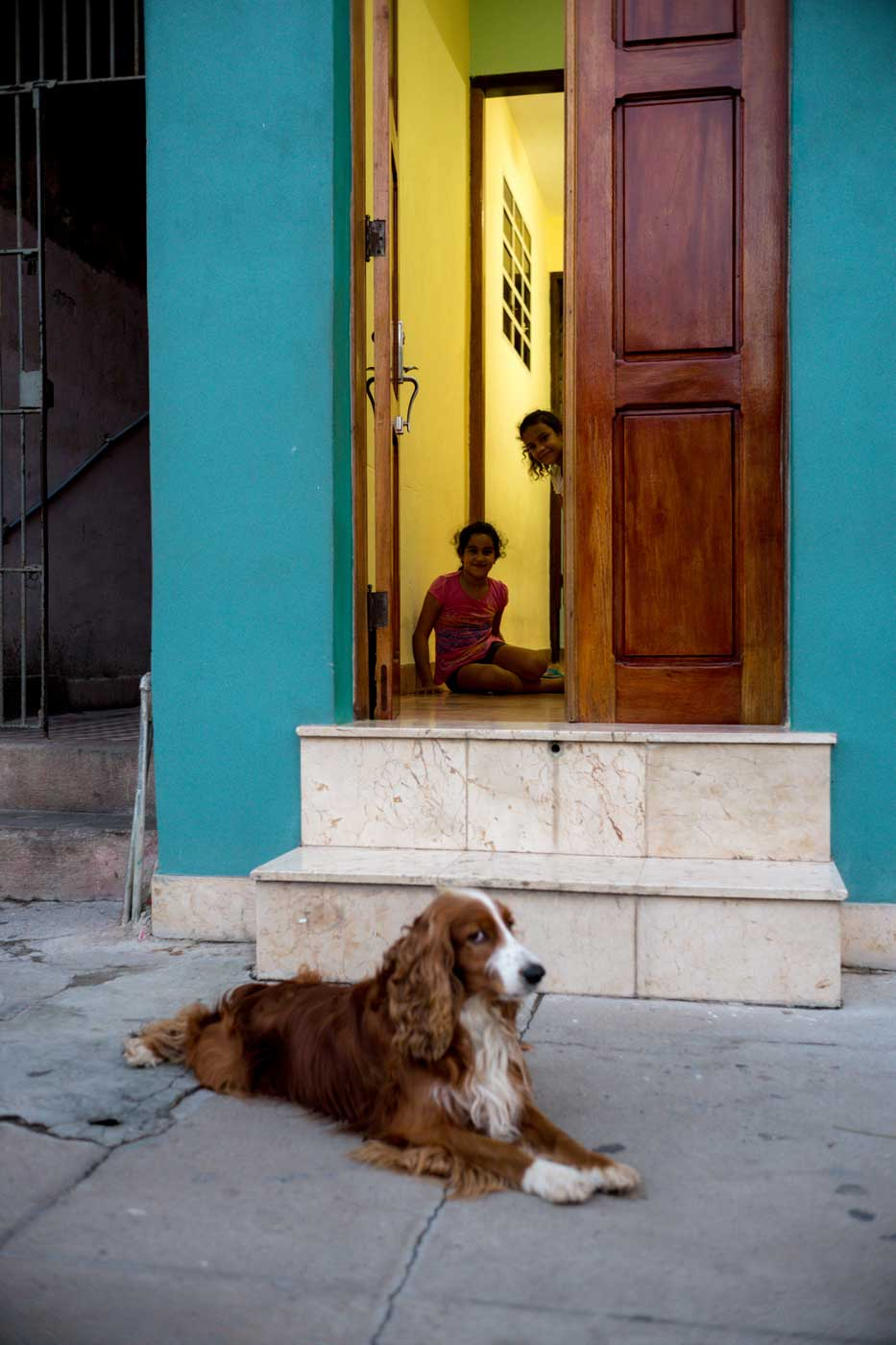 travel-cuba-cienfuegos-leica-m10-rangefinder-35mm-f2-summicron-iv-pre-a-trip-dog-gave-me-a-look